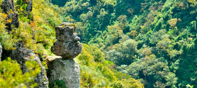Número um em atrativos naturais, Brasil comemora Dia do Meio Ambiente